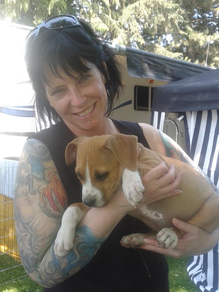 Baby puppy Marshall